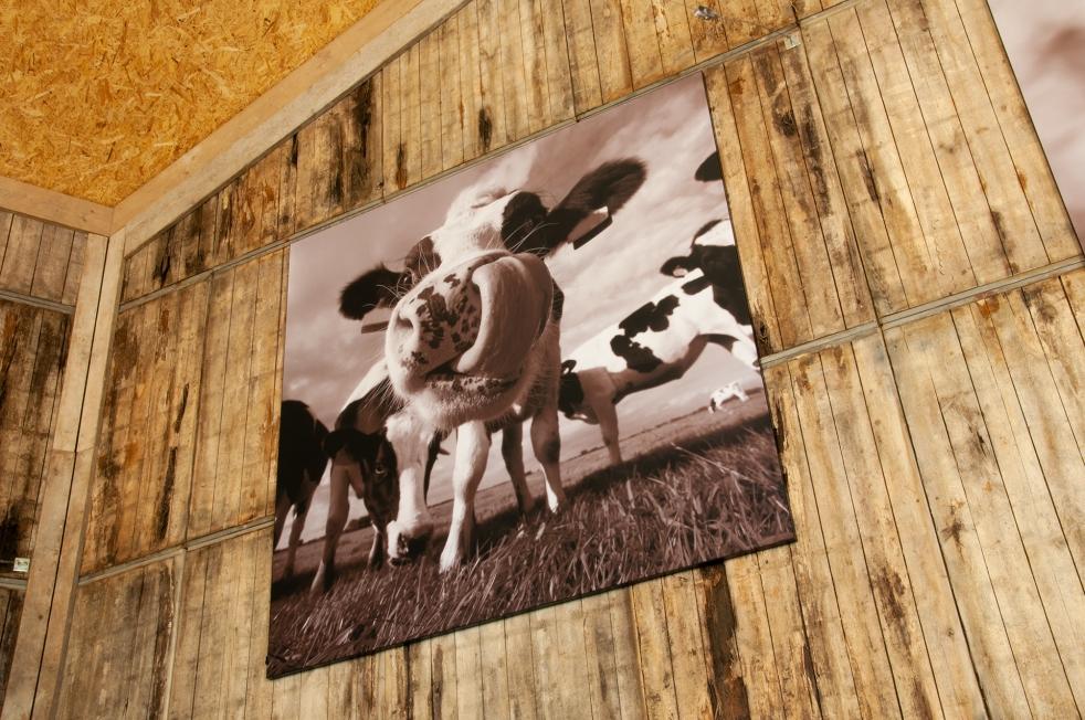 't Dommeltje - Textielframes met print